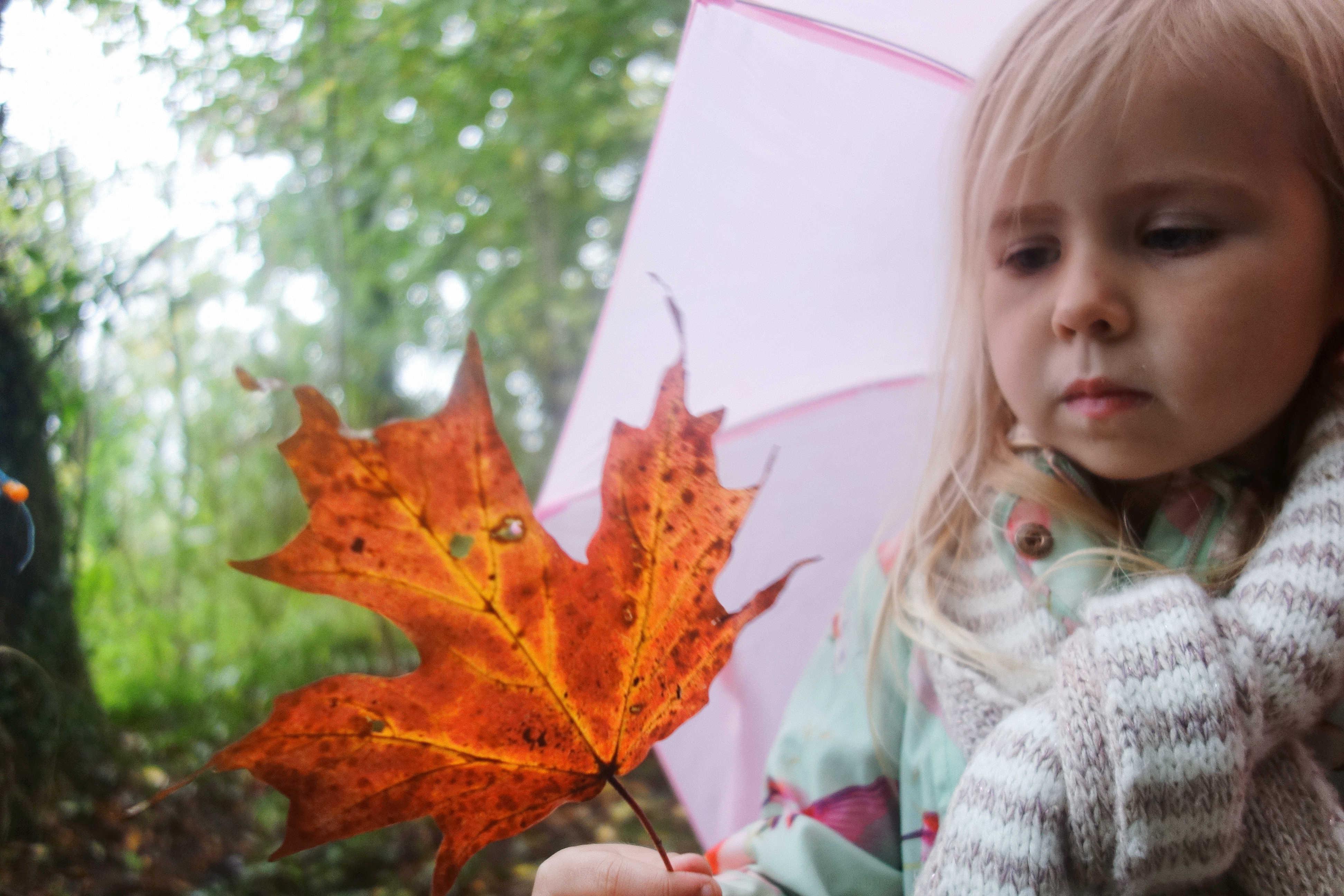 Harri holding a leaf