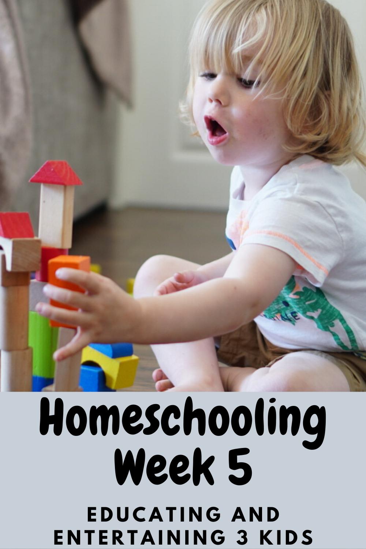 homeschooling week 5