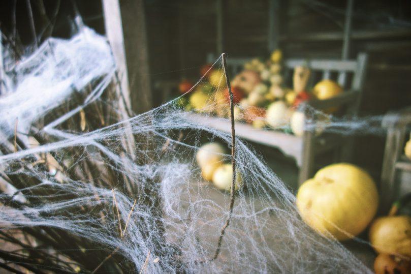 Halloween at Ness Gardens